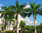 Florida hotel tourism