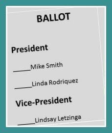 ballot for neighborhood nonprofit board officers