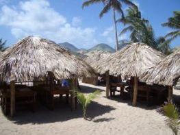 attractive thatched huts