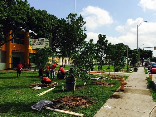 tree planting in front of elementary school