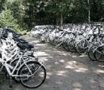 white bicycles parked at sharing facility