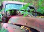 vegetation growing up through hood of old pick-up