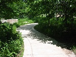 curving concrete path