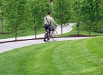 single bicyclist on paved path through lush turf grass area