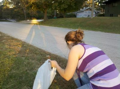 park cleanup Macomb