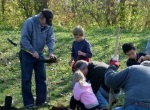 green communities tree planting
