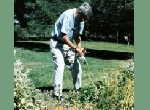 older man tending flower bed