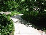 curving concrete path