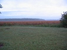 open land, which might be subject to agricultural zoning