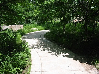 curving concrete path in Watanabe Family Garden in Indianapolis