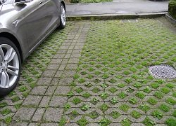 interesting design for permeable pavers and grass in parking stall for environmental sustainability