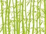 bamboo as a green material