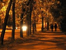 pedestrians on dark sidewalk