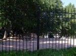 shady dog park