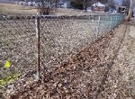 chain link fence near a subdivision of fifties houses